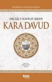 Delâil-i Hayrat Şerhi (Kara Davut)