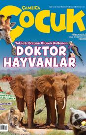 Çamlıca Çocuk Dergisi 13. Sayı (Şubat 2017)